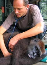 Dr. Felix Lancaster, Project Director of the Limbe Wildlife Centre & also head veterinarian